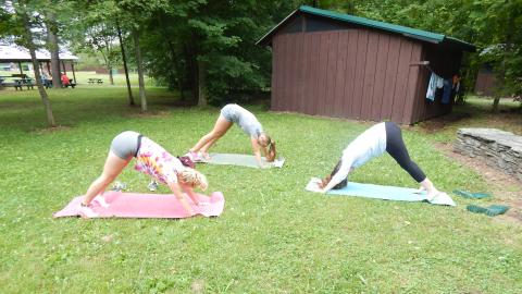Three individuals in downward dog pose on mats outside on the lawn.