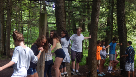Group of youth holding hands and standing on a cable strung between trees a few inches from the ground on the ropes course.