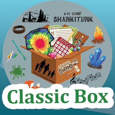 4-H Camp Shankitunk Classic Box written over graphic of activity icons spilling out of a box
